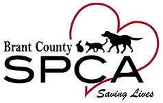 Brant County SPCA | Saving Lives
